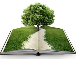 Aleks Sternen Buch Lebensbaum